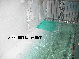 f0031037_215346100.jpg