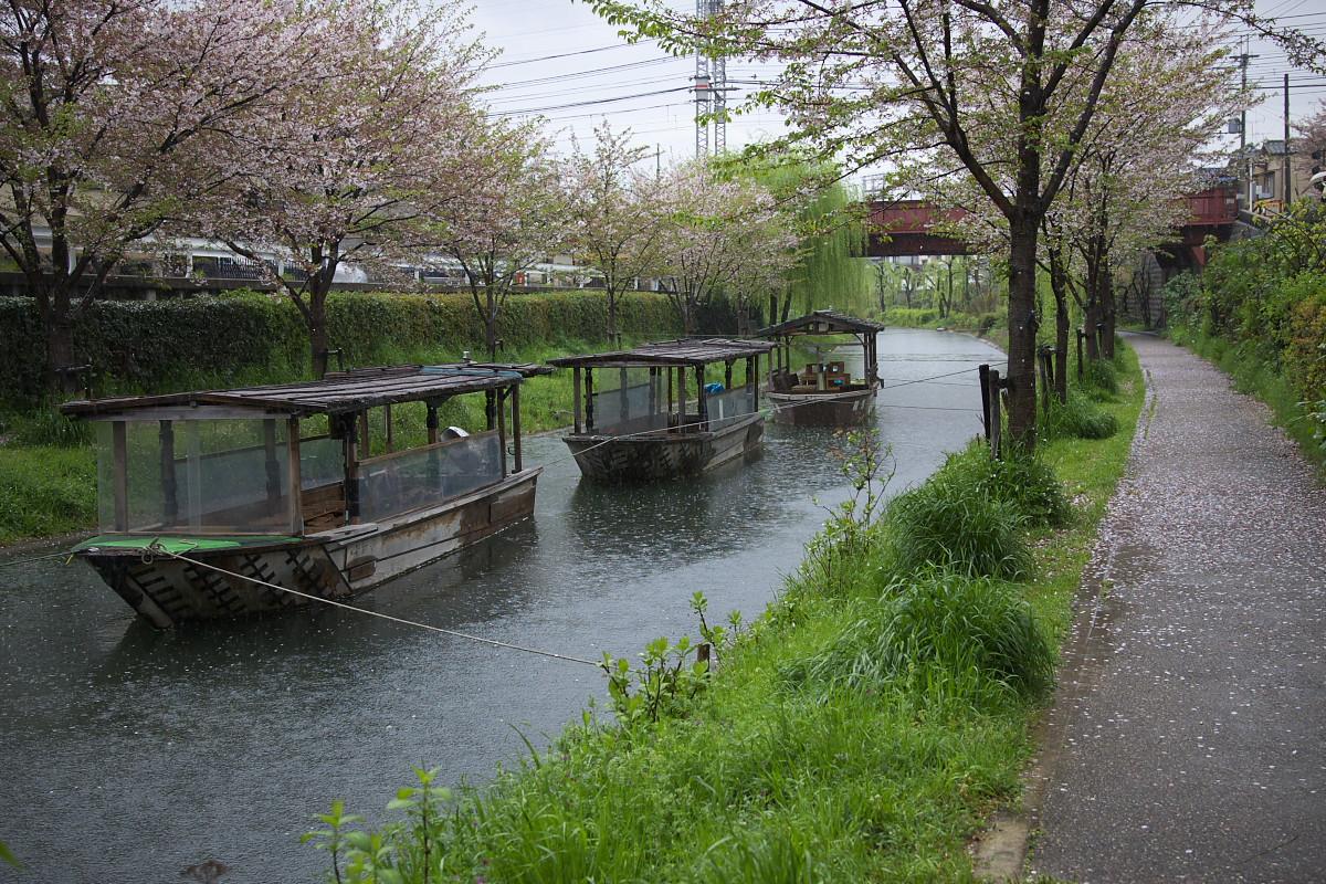 京都 雨の伏見十石舟_f0021869_1937336.jpg