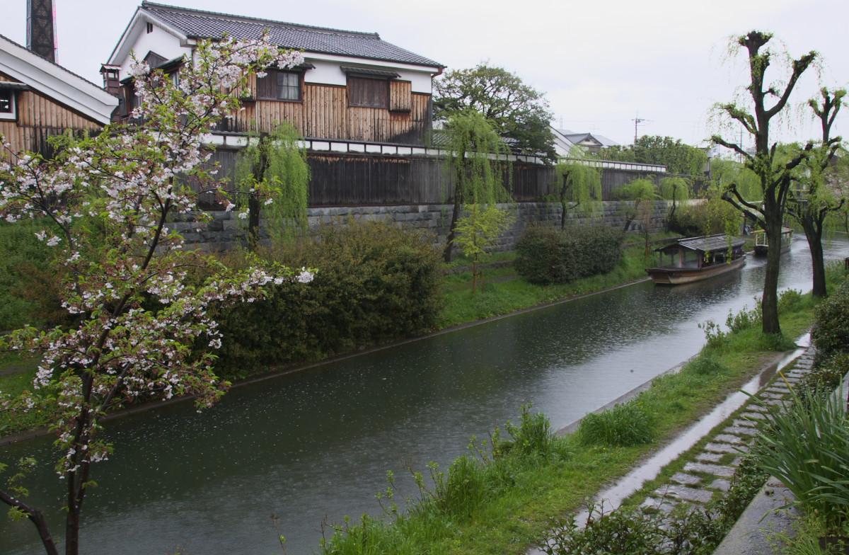 京都 雨の伏見十石舟_f0021869_1941160.jpg