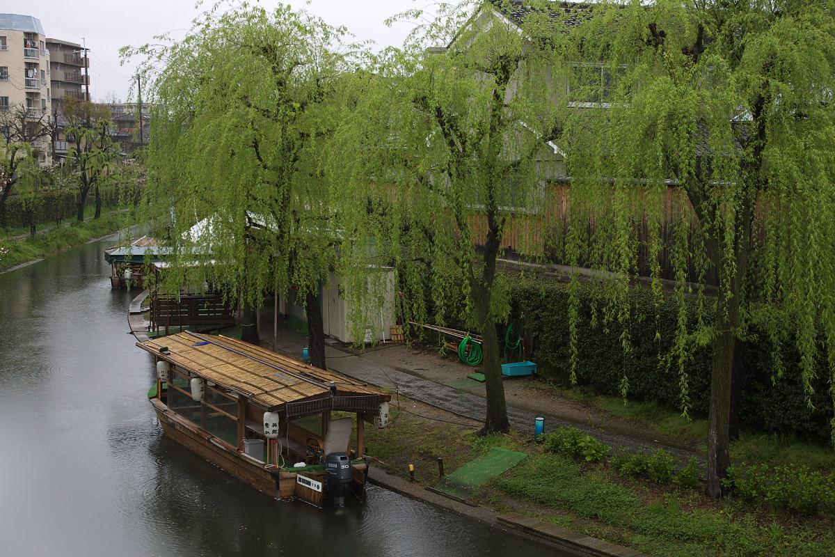 京都 雨の伏見十石舟_f0021869_1942161.jpg