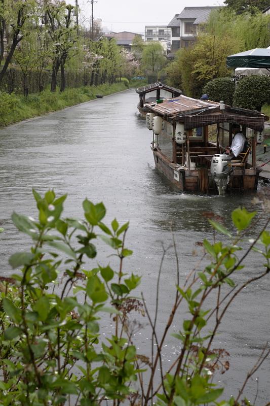 京都 雨の伏見十石舟_f0021869_19444085.jpg