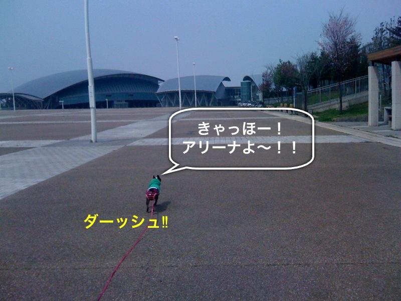 f0168374_2241481.jpg