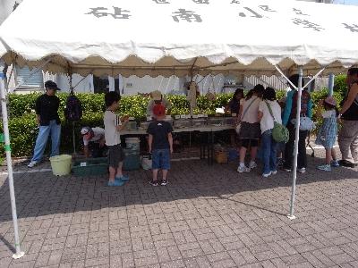 子どもの日スペシャル 多摩川移動水族館_c0091679_23462485.jpg
