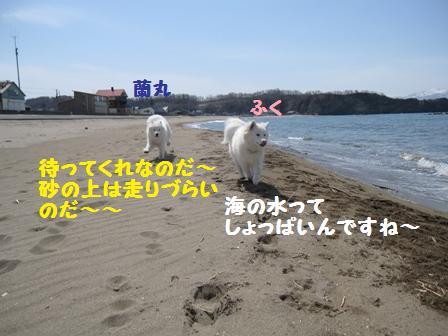f0212597_1301512.jpg