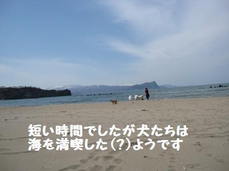 f0212597_132488.jpg