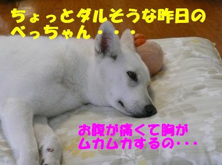 f0121712_1804382.jpg