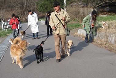4月26日 みんなで、朝のお散歩_e0136815_10273044.jpg