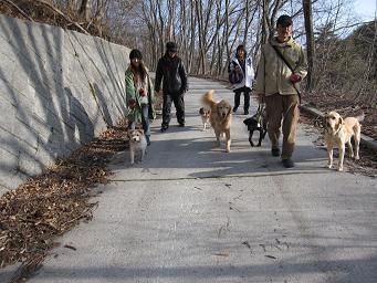 4月26日 みんなで、朝のお散歩_e0136815_1045297.jpg