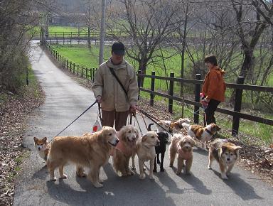 4月26日 みんなで、朝のお散歩_e0136815_10483014.jpg