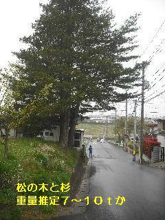 f0031037_192563.jpg