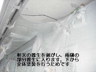 f0031037_19492214.jpg