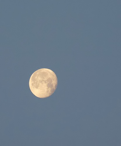 明るい月と連休の東京の災難_c0154941_23574350.jpg