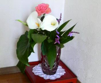 ご近所さんの密柑山_c0185356_1034113.jpg