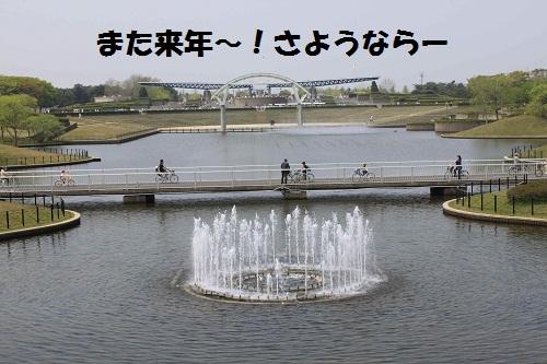 f0181462_14214283.jpg
