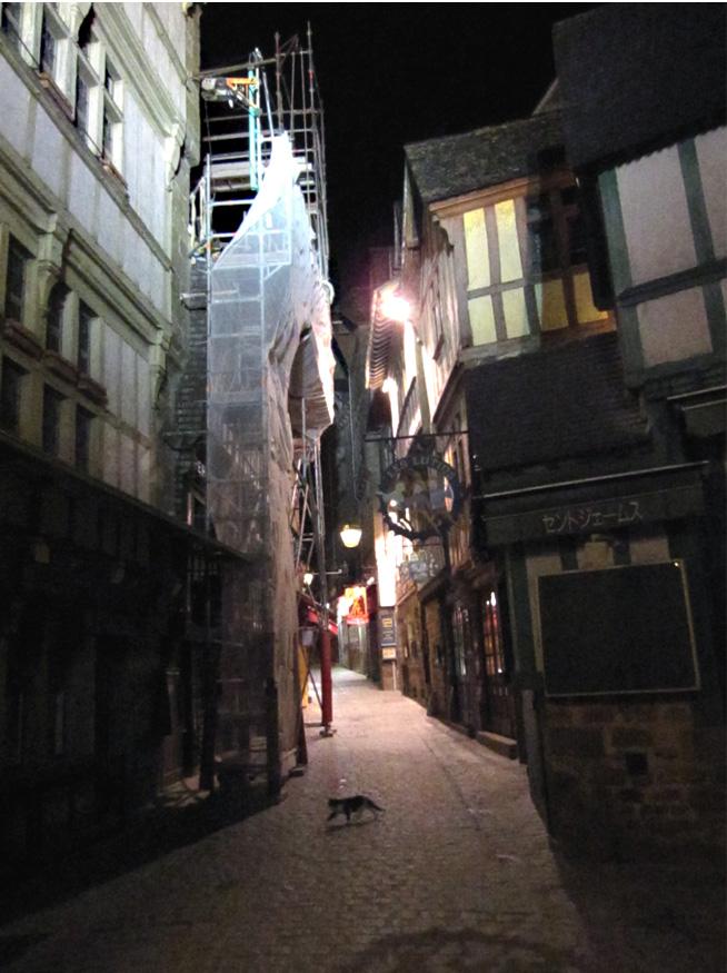フランスへGO♪♪^^♪♪ 〜夜のモンサンミッシェル♡〜_f0119369_16305116.jpg