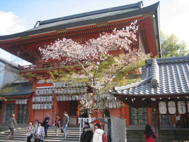 京都_c0136871_0563597.jpg