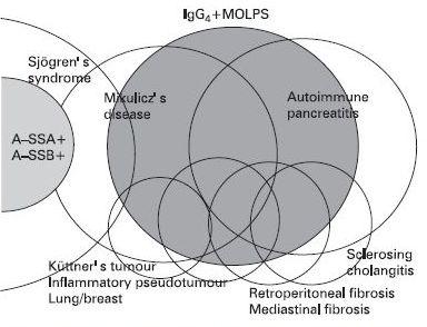 IgG4関連疾患_e0156318_21433120.jpg