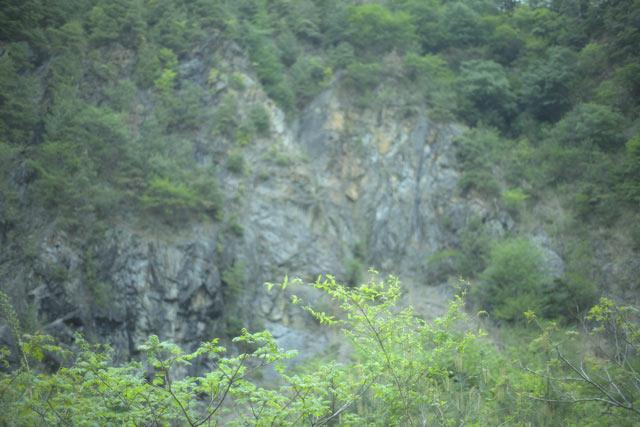 f0162725_20113821.jpg