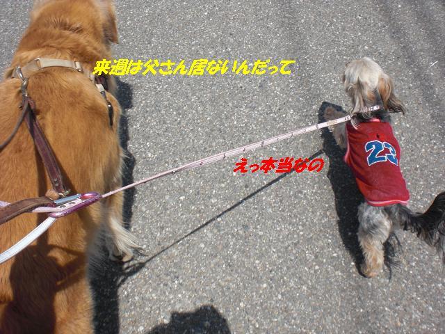 f0114128_15204373.jpg