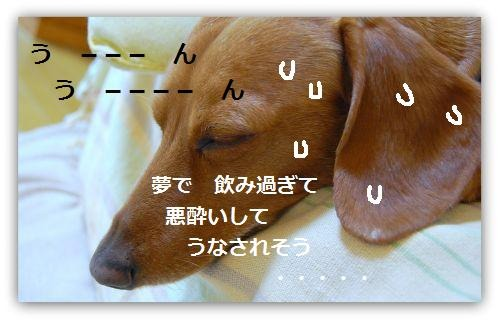 b0112758_20344142.jpg