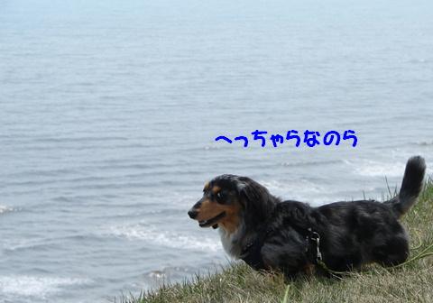 f0195891_16532778.jpg