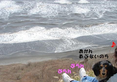 f0195891_1655068.jpg
