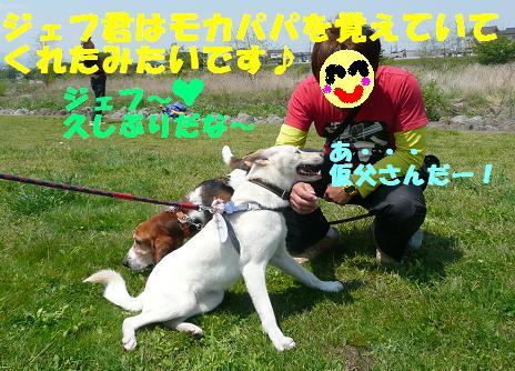 f0121712_6304192.jpg