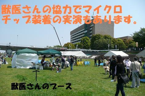 f0121712_6315980.jpg