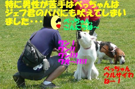 f0121712_7114685.jpg