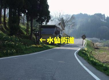 d0064266_1512085.jpg