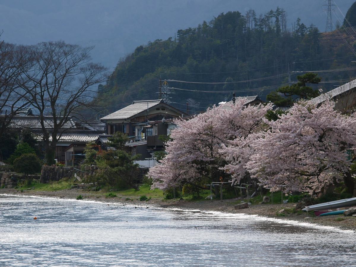 滋賀 春の琵琶湖を一周ブログ旅_f0021869_22593795.jpg