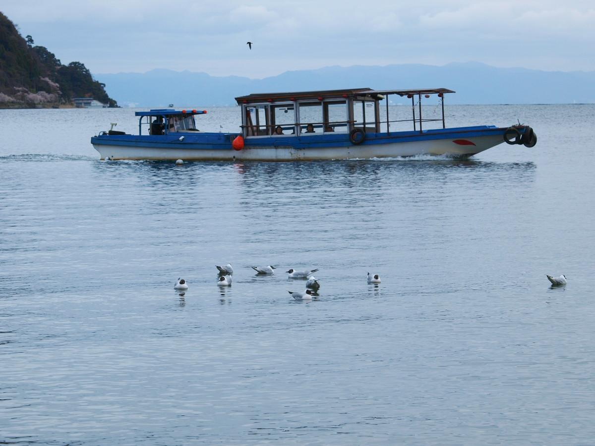 滋賀 春の琵琶湖を一周ブログ旅_f0021869_2323998.jpg