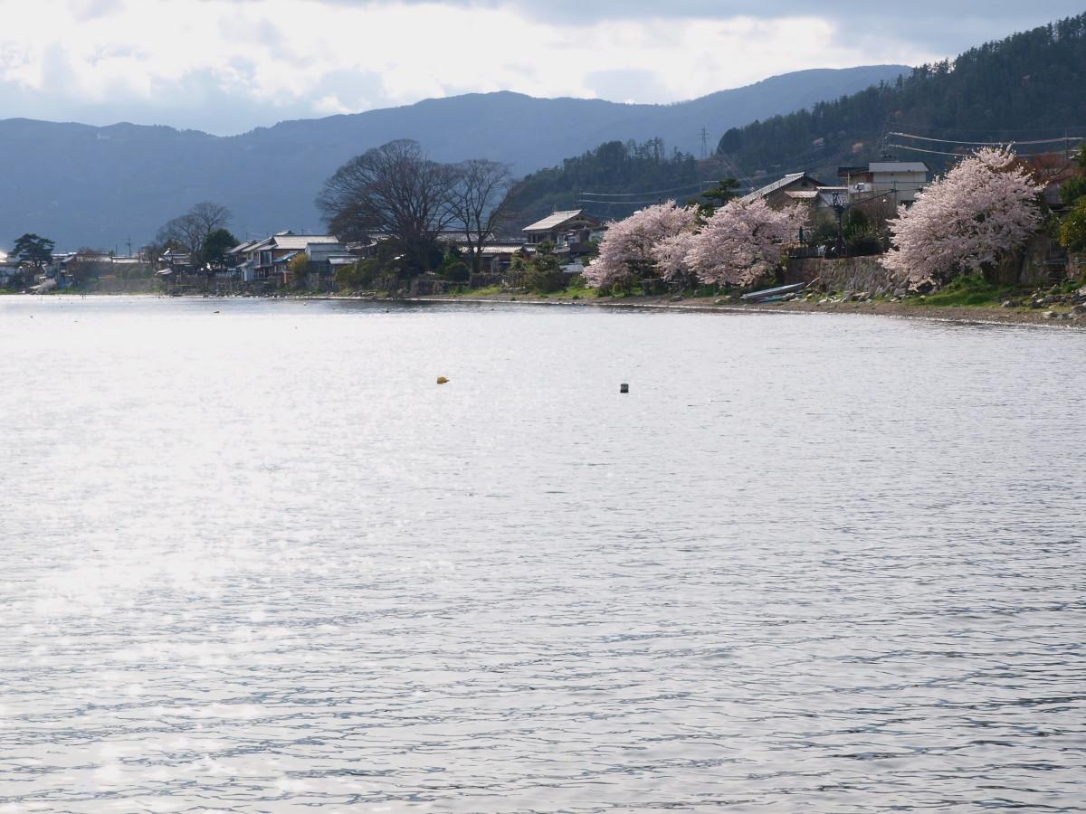滋賀 春の琵琶湖を一周ブログ旅_f0021869_2344240.jpg