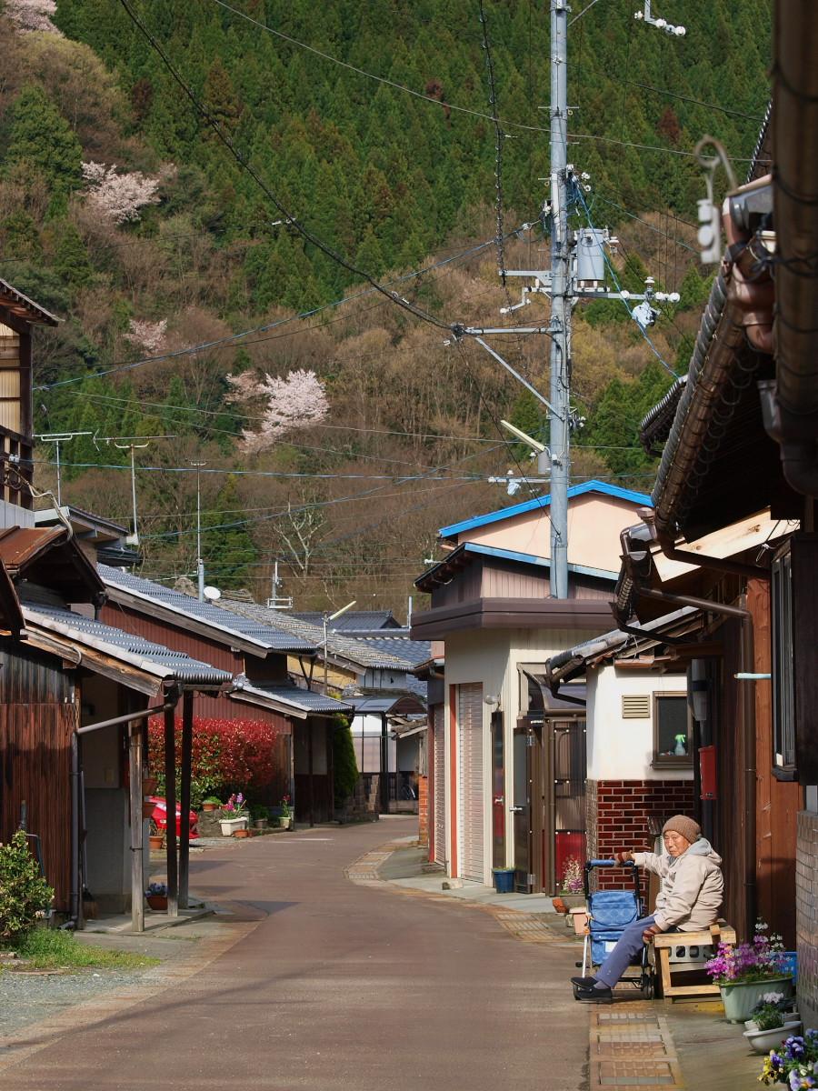 滋賀 春の琵琶湖を一周ブログ旅_f0021869_239252.jpg