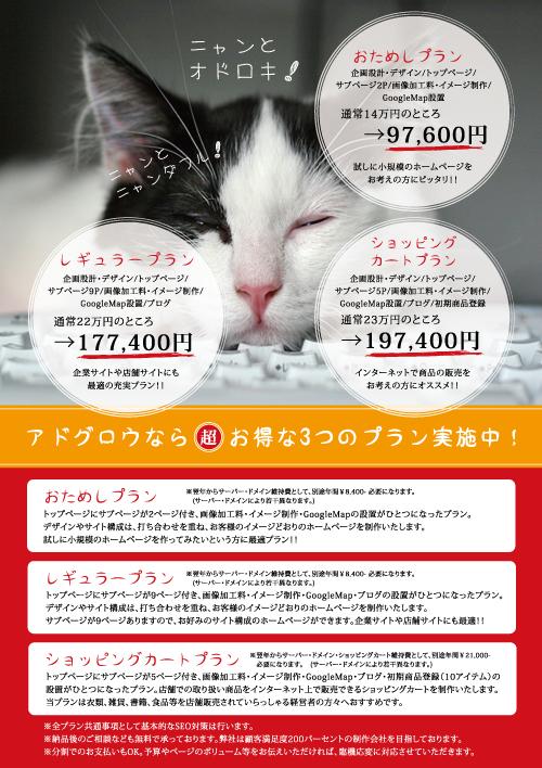 キャンペーン!!_b0132530_22205836.jpg