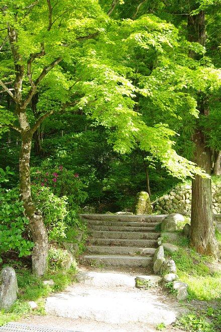 風薫る新緑の香嵐渓_e0171336_146322.jpg