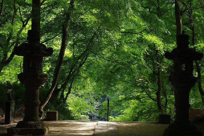 風薫る新緑の香嵐渓_e0171336_225352.jpg