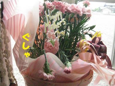 b0151748_1374693.jpg