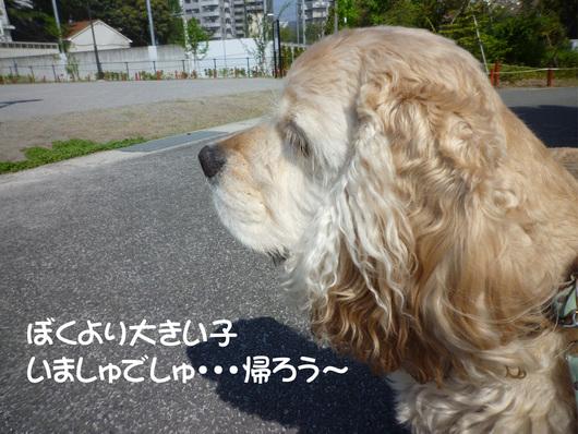 f0218182_20101644.jpg
