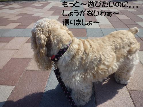 f0218182_20112996.jpg