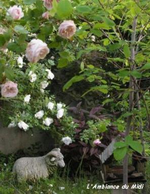 盛りの薔薇 Vol.Ⅰ_c0228386_21215342.jpg