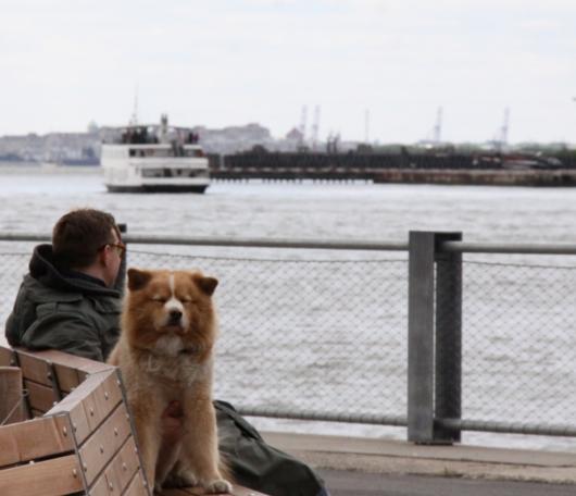 イーストリバー沿いに新しい公園がオープン! Brooklyn Bridge Park Pier1_b0007805_2273074.jpg