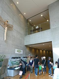建築探訪 ぐんま昆虫の森_a0130926_152375.jpg