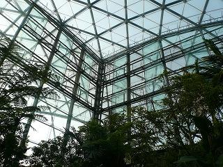 建築探訪 ぐんま昆虫の森_a0130926_1525014.jpg