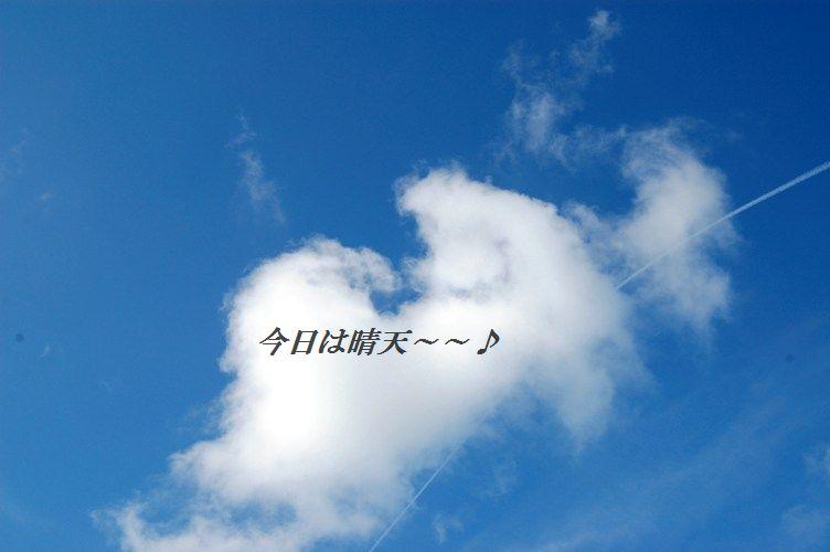 スモークサーモンのピリ辛ごまたっぷり刺身風丼 & お教室中継_d0104926_2442068.jpg