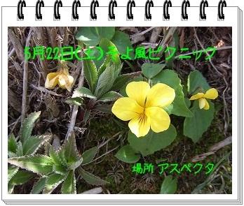 f0225735_20365979.jpg