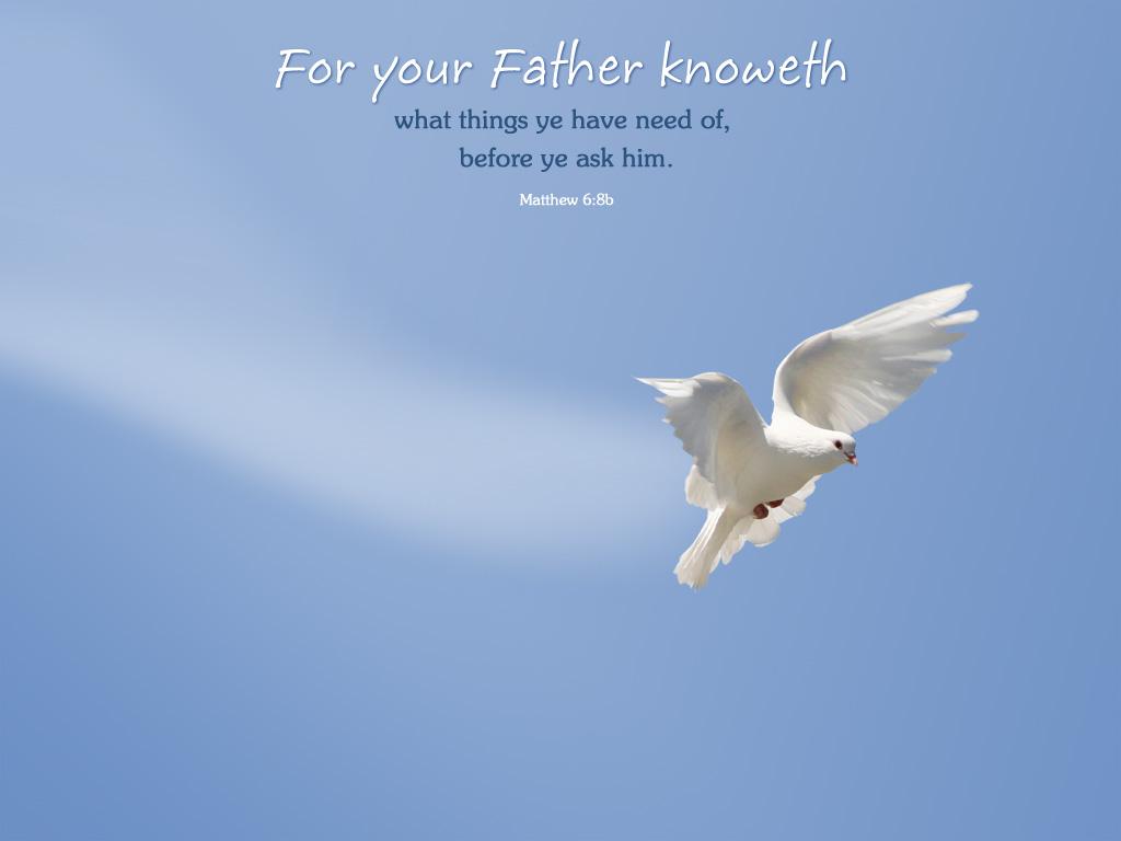 5月22日エステル7-10章『危機の後に祝福を与える主』_d0155777_913365.jpg