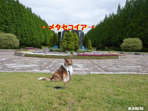 c0189388_1873552.jpg