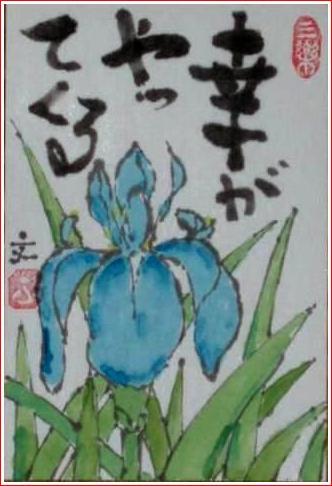 絵 手 紙 ( かきつばた ) 550_b0104092_15125385.jpg