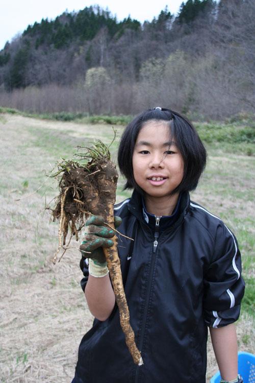 2010.5.10  春一番の恵み_d0160199_21295031.jpg